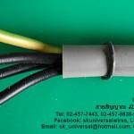 สายไฟฟ้า FLEX-JZ สายอ่อนคอนโทรล ทนสารเคมี และน้ำมัน