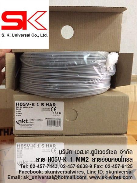 H05V-K 1 MM2 GREY